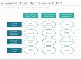 View Accelerated Growth Matrix Example Of Ppt