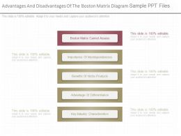 View Advantages And Disadvantages Of The Boston Matrix Diagram Sample Ppt Files