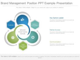 View Brand Management Position Ppt Example Presentation