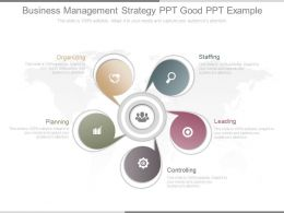 View Business Management Strategy Ppt Good Ppt Example