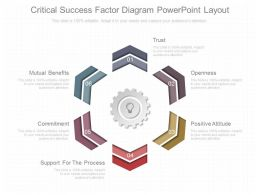 View Critical Success Factor Diagram Powerpoint Layout
