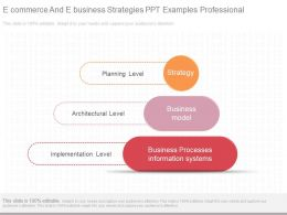 View E Commerce And E Business Strategies Ppt Examples Professional