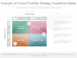 View Example Of Product Portfolio Strategy Powerpoint Slides