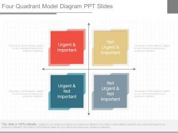 View Four Quadrant Model Diagram Ppt Slides