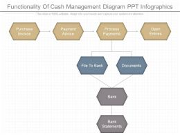 View Functionality Of Cash Management Diagram Ppt Infographics