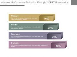 View Individual Performance Evaluation Example Of Ppt Presentation