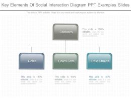 View Key Elements Of Social Interaction Diagram Ppt Examples Slides