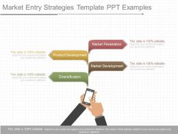 View Market Entry Strategies Template Ppt Examples