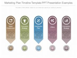 View Marketing Plan Timeline Template Ppt Presentation Examples