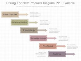 View Pricing For New Products Diagram Ppt Example