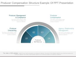 View Producer Compensation Structure Example Of Ppt Presentation