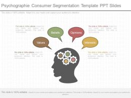 View Psychographie Consumer Segmentation Template Ppt Slides