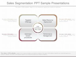 View Sales Segmentation Ppt Sample Presentations