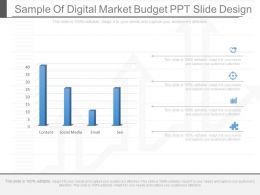 View Sample Of Digital Market Budget Ppt Slide Design