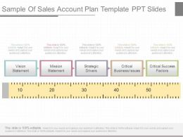View Sample Of Sales Account Plan Template Ppt Slides