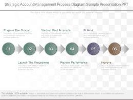View Strategic Account Management Process Diagram Sample Presentation Ppt