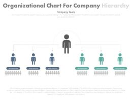 view Two Level Of Organizational Chart For Company Hierarchy Flat Powerpoint Design