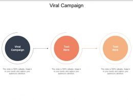 Viral Campaign Ppt Powerpoint Presentation Outline Designs Download Cpb