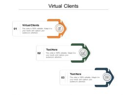 Virtual Clients Ppt Powerpoint Presentation File Images Cpb