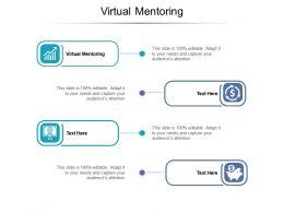Virtual Mentoring Ppt Powerpoint Presentation Portfolio Slides Cpb