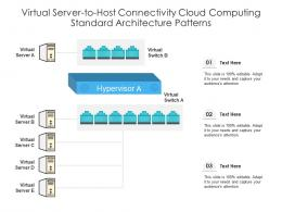Virtual Server To Host Connectivity Cloud Computing Standard Architecture Patterns Ppt Diagram