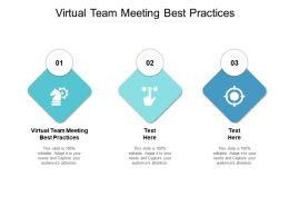 Virtual Team Meeting Best Practices Ppt Powerpoint Presentation Professional Model Cpb