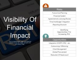 Visibility Of Financial Impact Ppt Example File