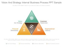 Vision And Strategy Internal Business Process Ppt Sample