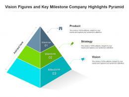 Vision Figures And Key Milestone Company Highlights Pyramid
