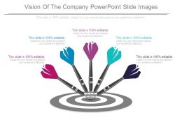 Vision Of The Company Powerpoint Slide Images