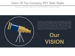 Vision Of The Company Ppt Slide Styles