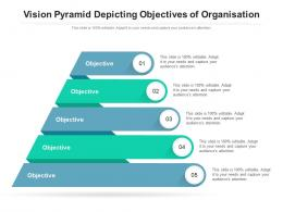 Vision Pyramid Depicting Objectives Of Organisation