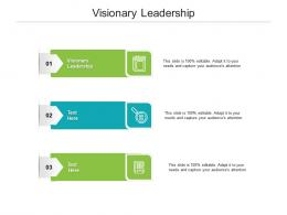 Visionary Leadership Ppt Powerpoint Presentation Pictures Designs Cpb