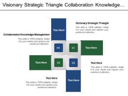 Visionary Strategic Triangle Collaboration Knowledge Management Target Market