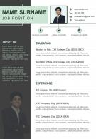 Visual Curriculum Vitae Sample Resume Design For Job Search