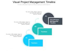 Visual Project Management Timeline Ppt Summary Graphics Template Cpb