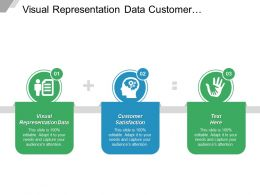 Visual Representation Data Customer Satisfaction Corporate Branding Business Pricing Cpb