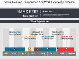 Visual Resume Introduction And Work Experience Timeline Example Of Ppt