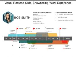 Visual Resume Slide Showcasing Work Experience
