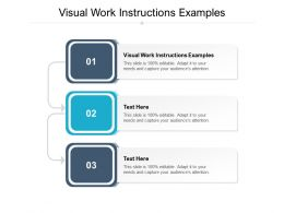 Visual Work Instructions Examples Ppt Powerpoint Presentation Ideas Maker Cpb