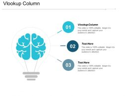 Vlookup Column Ppt Powerpoint Presentation Infographic Template Aids Cpb