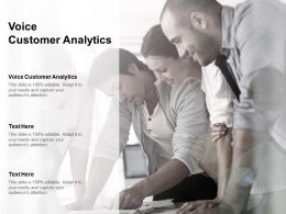 Voice Customer Analytics Ppt Powerpoint Presentation Summary Cpb