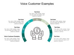 Voice Customer Examples Ppt Powerpoint Presentation Infographics Cpb