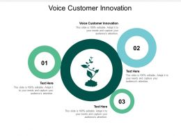 Voice Customer Innovation Ppt Powerpoint Presentation Slides Format Ideas Cpb