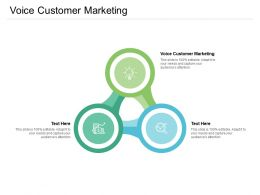 Voice Customer Marketing Ppt Powerpoint Presentation Outline Aids Cpb