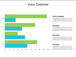 Voice Customer Ppt Powerpoint Presentation Gallery Format Cpb