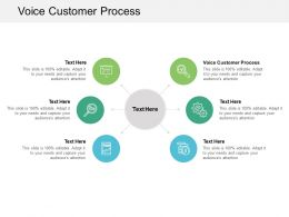 Voice Customer Process Ppt Powerpoint Presentation Styles Cpb