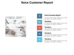 Voice Customer Report Ppt Powerpoint Presentation Portfolio Show Cpb
