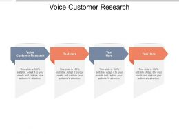 Voice Customer Research Ppt Powerpoint Presentation File Summary Cpb