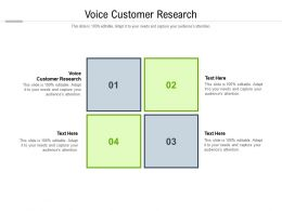 Voice Customer Research Ppt Powerpoint Presentation Styles Master Slide Cpb